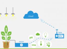 Hệ thống giám sát nông nghiệp bằng công nghệ IoT